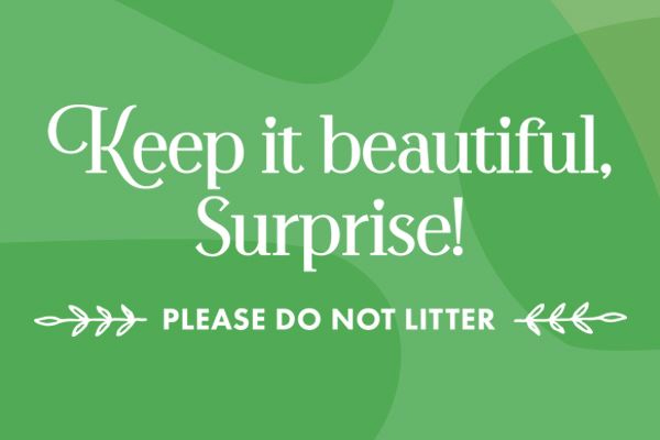 Keep it beautiful, Surprise!